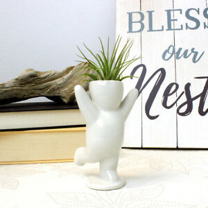 White Ceramic Air Head Cheering Person with Live Air Plant