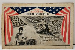 Patriotic 1917 For Home And County Gardening amp; Do Our Own Canning Postcard C14 $12.95