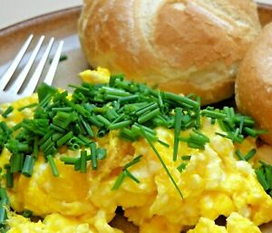 Powdered Eggs BEST PRICES! 2 POUNDS (32 OZ) MAKES 70 LARGE EGGS, FROM IOWA (USA)