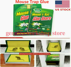 5/10Pcs Rat Trap Snare Mouse Glue Snare Traps Mice Rodent Sticky Boards Tool