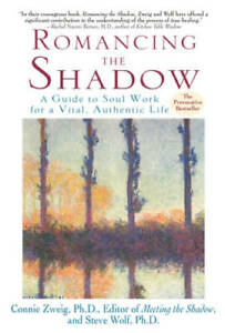 Romancing the Shadow: A Guide to Soul Work for a Vital Authentic Life GOOD