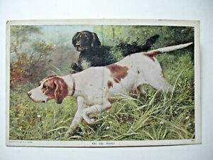 1909 quot;On the Scentquot; Hunting Dogs Postcard