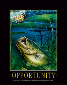Largemouth Bass Fishing Motivational Poster Print Vintage Fishing Lures   MVP94