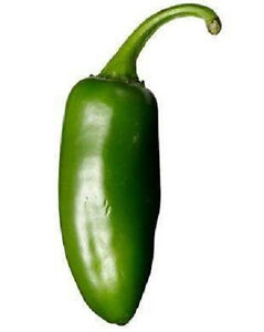 400 Hot JALAPENO PEPPER Capsicum Annuum Spicy Vegetable Seeds *Flat Sip + Gift