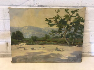 Vintage Antique Signed Adams Oil on Canvas Southwest Landscape Painting $395.00