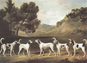 1762 Foxhounds in a Landscape, antique, GEORGE STUBBS, Dogs,16x11 Canvas Art