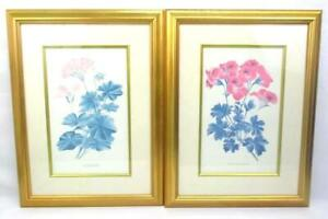 Two Geranium Lithographs Ivy Leaved And Pelargonium Grandiflora Framed Matted $21.56
