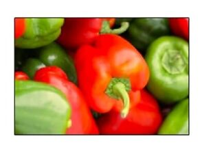 California Wonder Bell Pepper Seeds  | NON-GMO | Fresh Garden Seeds