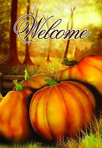 Fall Welcome Pumpkin House Flag 28quot; x 40 Double Sided