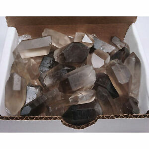 Smoky Quartz Points Collection 1 2 Lb Clear Brown Crystals Brazil $19.98