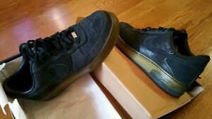 Nike Air Force One 25th Anniversary Edition LeBron