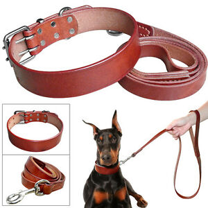Dog Collar Leather Genuine Soft Rolled Leash Padded Lead Adjustable Pitbull New