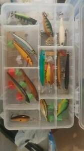 fishing lures jerk crank and top water.