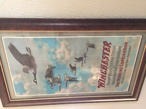 rare 1907 Winchester geese poster advertising MINT decoy ammo box shot shell