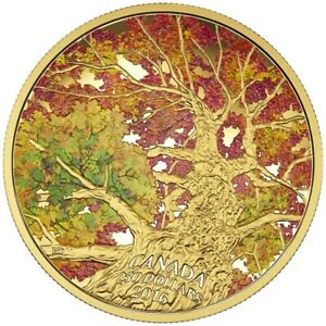 Canada 2016 250$ Maple Canopy Kaleidoscope of Colour 2oz Coloured Pure Gold Coin