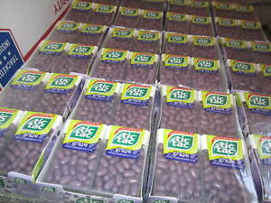Tic Tac Grape Flavor (144 Sealed individual 1 oz packs) BB 2016  Discontinued