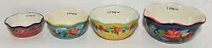 *The Pioneer Woman Wildflower Whimsy Nesting Measuring Bowl Set 4 piece NEW