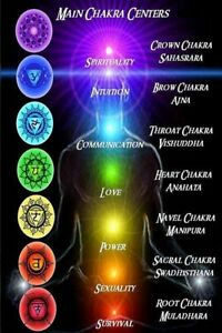 Seven Chakras of Yoga Poster 24x36 inch rolled wall poster $10.00