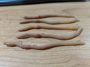 LOT 5 Kelly's Bass Lures Plow Jockeys Neutral Clear 5 1 2″ Worms Pre Rigged