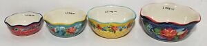 The Pioneer Woman Wildflower Whimsy Nesting Measuring Bowl Set 4 piece $16.99