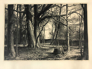 Stow Wengenroth Edge of the Woods New Hope Pennsylvania 1944 Lithograph Signed $665.21