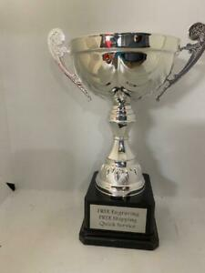 Trophy Cup Award Silver Metal 9 3 4quot;