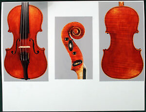 A very fine Italian violin by Giuseppe Tarasconi 1899