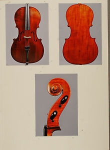 A very fine old certified French cello by Francois Barbe Pere ca. 1835