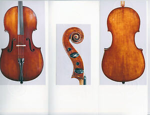 A very fine certified Italian cello by Giulio Degani ca. 1910.