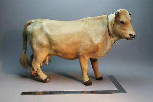 19th century french mechanical cow with mooing