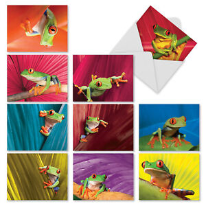 M9637TYG Frog Days: 10 Assorted Thank You Note Cards Envelopes. big cards $9.98