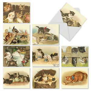 M1732TY Cutey Cats: 10 Assorted Thank You Note Cards Envelopes. big cards $9.98