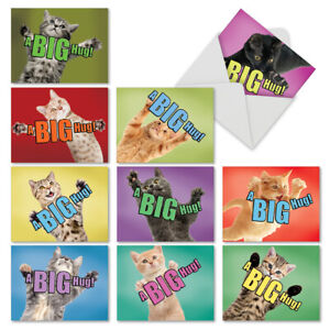 M6614OCB Cat A Big Hug: 10 Assorted Blank All Occasion Note Cards Envelopes $9.98