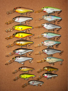 Rebel Double Deep Shad R's Excalibur Shad R's Mystic Shad R's Lot of 19 Lures