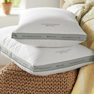 1Hotel Premier Collection Queen Pillows by Member's Mark (2-pk.)