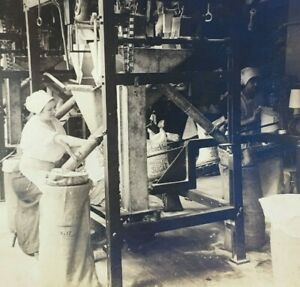 Stereoview New York Sugar Factory Worker Filling and Sewing Bags $20.70