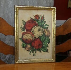 Antique 1870 Currier & Ives Hand-Colored Lithograph Hundred Leaf Rose Framed