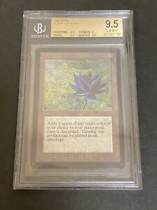 MTG 1x BETA BLACK LOTUS (BGS 9.5) vintage power 9 magic the gathering gem mint
