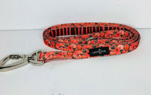 Lucy amp; Co 5 Foot Leash Best Designer Big Small Dogs Puppy All Breeds Posey Pink
