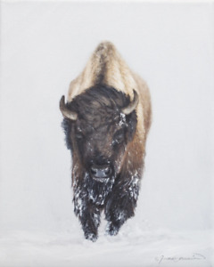 Western Winter Bison Painting Original Oil on Canvas Signed by Artist $100.00