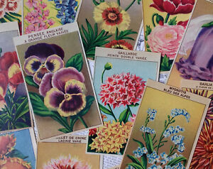 72 DIFFERENT Vintage French Flower Seed Packet Labels Genuine 1920#x27;s lithographs