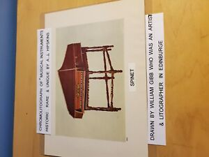 . Chromolithograph of musical instrument by A. J. HIPSKINS historic rare. amp; u $100.00