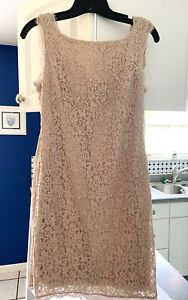 adrianna papell lace dress Size 6 $15.00