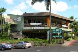 Established hobby train gift toy and collectibles retail shop Kauai BEACHRAIL