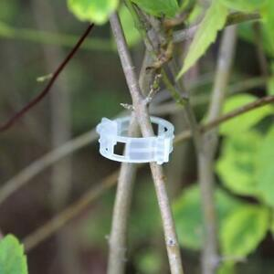 100pcs Useful Tomato Veggie Garden Plant Support Clips Trellis Twine Greenhouse