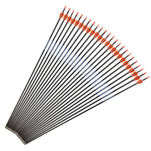 6122448PCS 76cm Pure Carbon Arrows Spine500 for RecurveCompound Bow Hunting