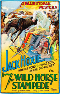 The Wild Horse Stampede 1926 Movie Poster $9.99