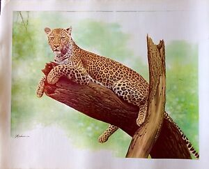 ORIGINAL ART RARE LEOPARD CAT WILD ANIMAL LITHOGRAPH BY FLORIDA ARTIST LEEHAN $99.00