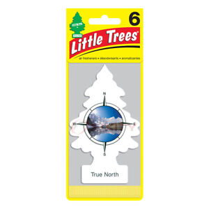Little Trees True North Hanging Air Freshener Home Car 6-12-24-48-96-144 pc