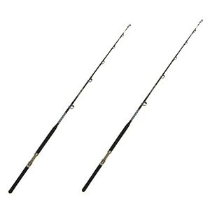 60-80 lb. Open Guide Boat Pole - Saltwater Fishing Rod (2 Pack)